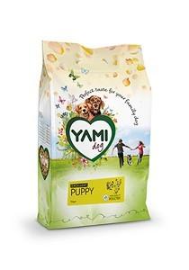 Yami excellent puppy