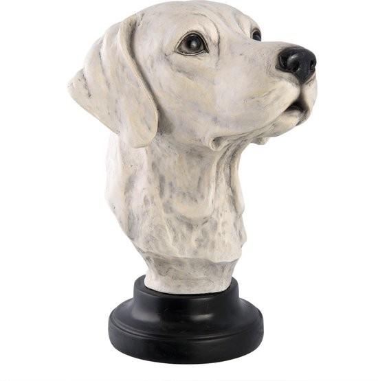 borstbeeld hond