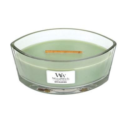 White Willow Moss Ellipse