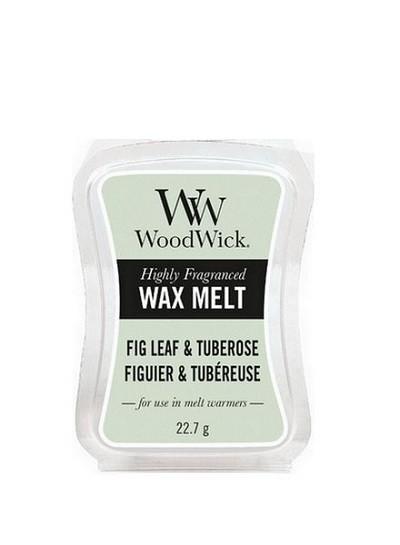 Fig Leaf & Tuberose Waxmelt