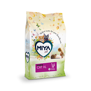 Miya cat XL excellent